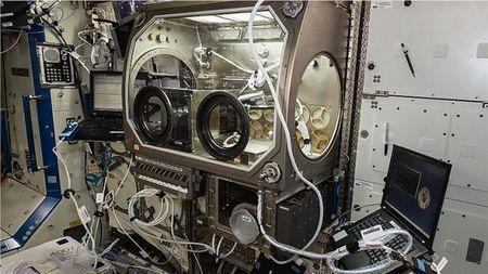 Принтер на борту МКС