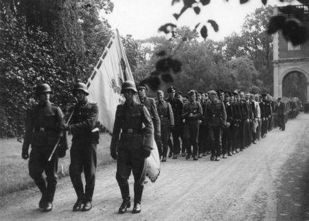 Як Бельгія і Нідерланди воювали на боці Гітлера проти СРСР