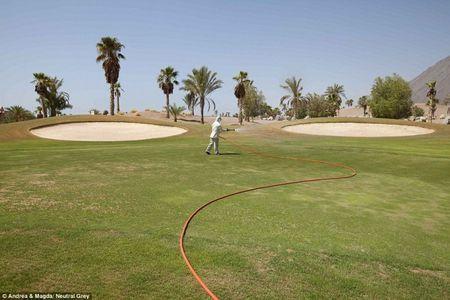 За деякими полями для гольфу все ще доглядають